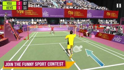 羽毛球比赛:锦标赛